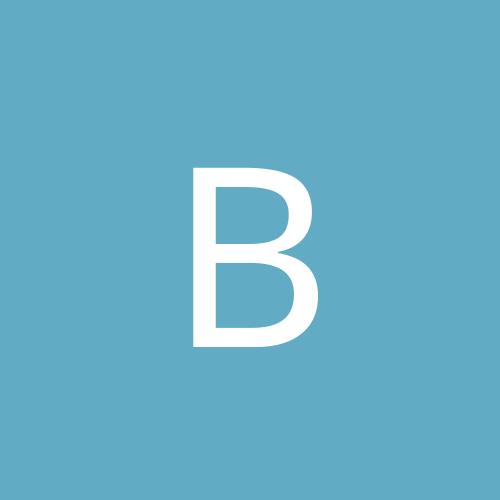 big_brian