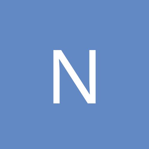 noctus